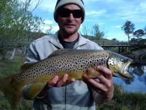 Ecumbene River 4.2lb Browny